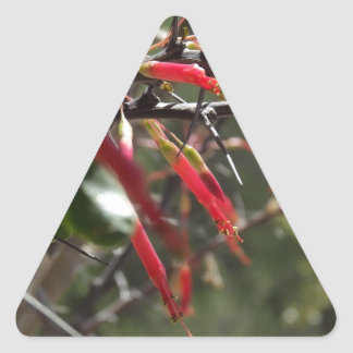 Red Desert Flower Petals Triangle Sticker