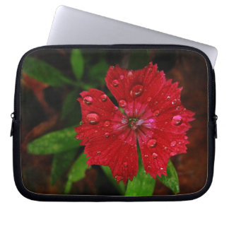 Red Dianthus With Raindrops Computer Sleeves