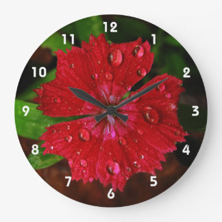 Red Dianthus With Raindrops Large Clock