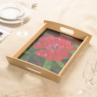 Red Dianthus With Raindrops Serving Tray