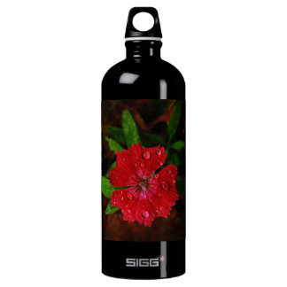 Red Dianthus With Raindrops Water Bottle