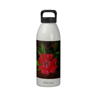 Red Dianthus With Raindrops Water Bottles