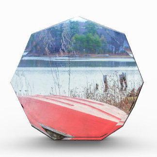 Red Dingy Maine Award