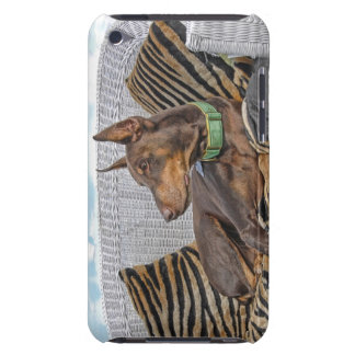 Red Doberman Lounge Barely There iPod Cover