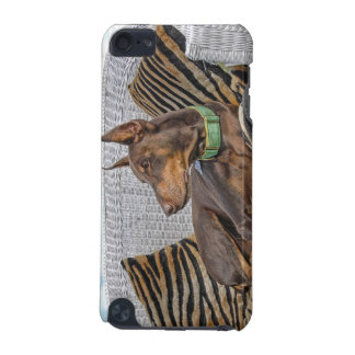 Red Doberman Lounge iPod Touch (5th Generation) Cover