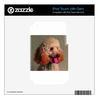 red dog of zoar iPod touch 4G decal