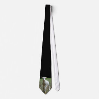 Red Dog Ranch - Lamb Neck Tie