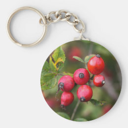 Red Dog Rose Fruits Keychain