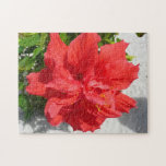 Red Double Hibiscus Flower Jigsaw Puzzle