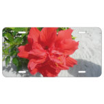 Red Double Hibiscus Flower License Plate