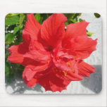 Red Double Hibiscus Flower Mouse Pad