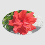 Red Double Hibiscus Flower Oval Sticker