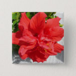 Red Double Hibiscus Flower Pinback Button