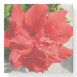 Red Double Hibiscus Flower Stone Coaster