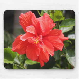 Red Double Hibiscus on Mousepad