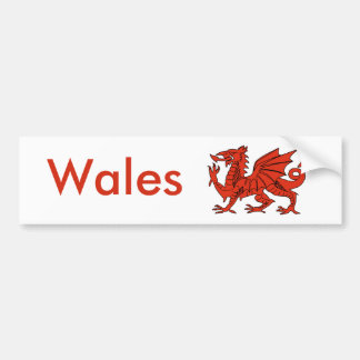 Red Dragon Bumper Sticker