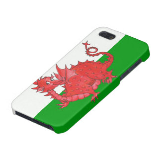 Red Dragon on Green and White iPhone 5/5s Case