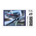 """""""Red Dragonfly#2 Perched otb U.S. Postage Stamp"""