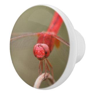 Red Dragonfly Custom Cabinet Knob /