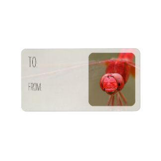 Red Dragonfly Gift Tags Sheets