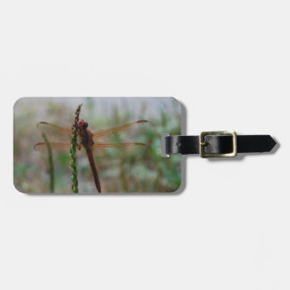 Red Dragonfly Luggage Tag