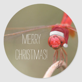 Red Dragonfly Merry Christmas Envelope Seals /