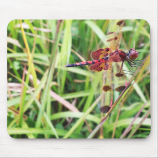 Red Dragonfly Mouse Pad