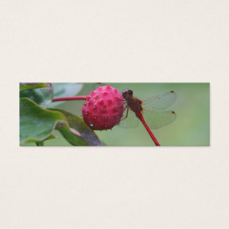 Red Dragonfly Nature Photo Mini Bookmark Mini Business Card