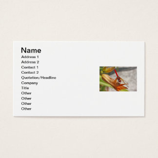 Red Dragonfly on Tiger Lily Business Card
