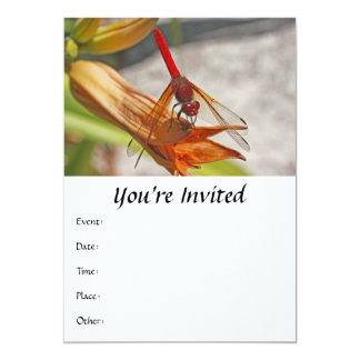 Red Dragonfly on Tiger Lily 5x7 Paper Invitation Card