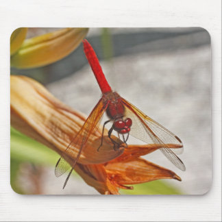 Red Dragonfly on Tiger Lily Mouse Pad
