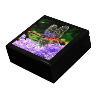 Red Dragonfly on Violet Purple Flowers Keepsake Box