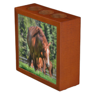 Red Dun Chestnut Mare Horse Equine Photo Pencil Holder