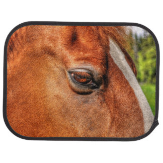 Red Dun Gelding Horse's Eye Equine Photo Car Floor Mat