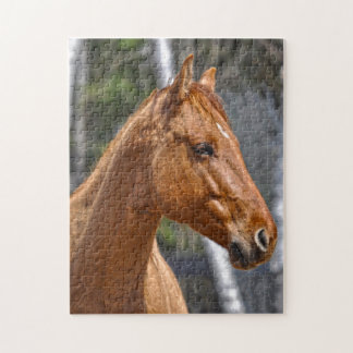 Red Dun Horse Equine-lovers Animal Gift Jigsaw Puzzle