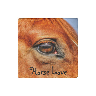 Red Dun Horse Face & Eye, Horse-lovers Photo Stone Magnet