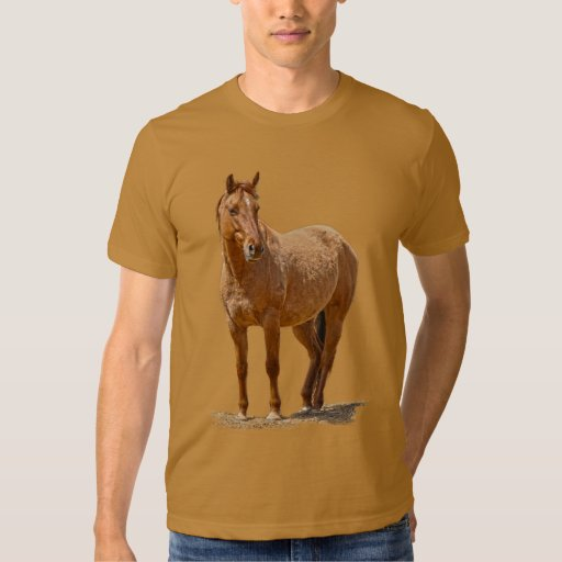 Red Dun Horse, Horse-lover's Equine Animal Shirts
