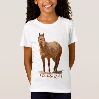 Red Dun Horse, Horse-lover's Equine Animal T-Shirt