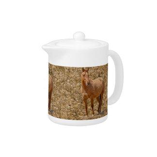 Red Dun Horse-lover's Equine Gift Design