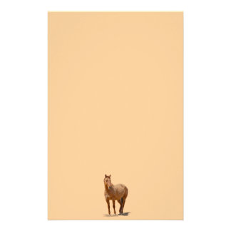 Red Dun Horse-lover's Equine Gift Design Stationery