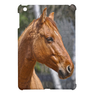 Red Dun Horse Portrait Horse-lover's iPad Case