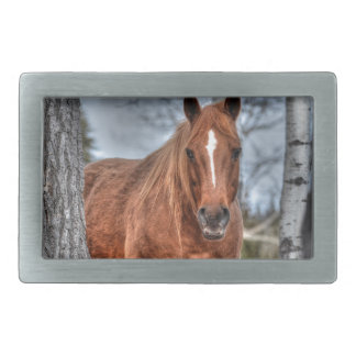 Red Dun Ranch Horse Animal-lover Photo Belt Buckle