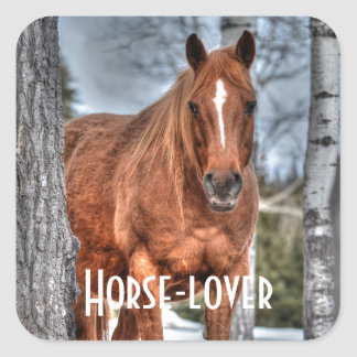 Red Dun Ranch Horse Animal-lover Photo Square Sticker