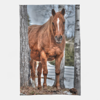 Red Dun Ranch Horse Animal-lover Photo Towel