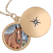 Red Dun Ranch Horse Equine-lover Photo Locket Necklace