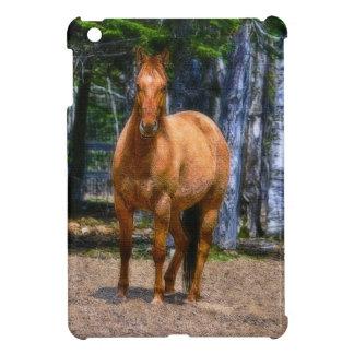 Red Dun Ranch Horse Horse-lover's iPad Case