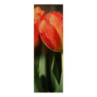 Red Dutch Tulips Bookmarks Photo Art Business Card Templates