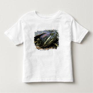 Red-eared Slider, Trachemys scripta elegans, 2 Toddler T-shirt