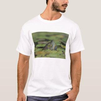 Red-eared Slider, Trachemys scripta elegans, T-Shirt