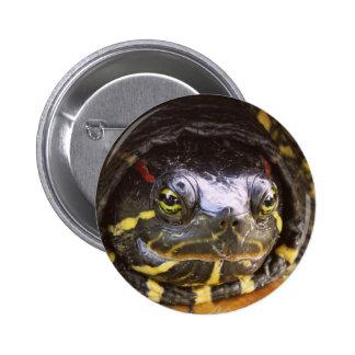 Red Eared Slider Turtle Head 2 Inch Round Button